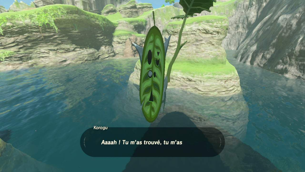 the legend of zelda breath of the wild korogu